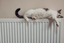 aluminiev-radiator