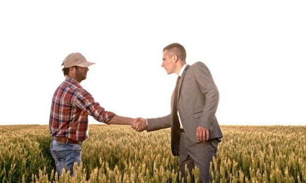 Борсите за зърно преминаха онлайн